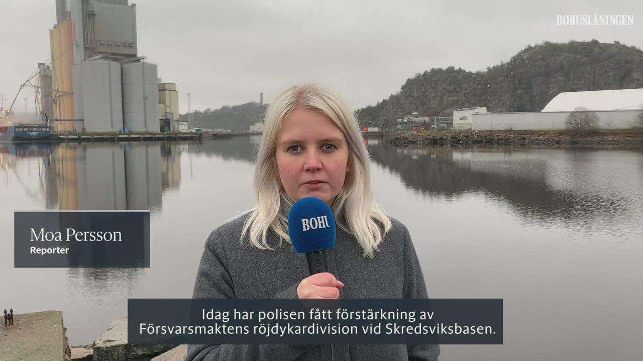 Lise-Lotte Skredsvik, 62 r i Bollebygd p Odens - redteksystems.net